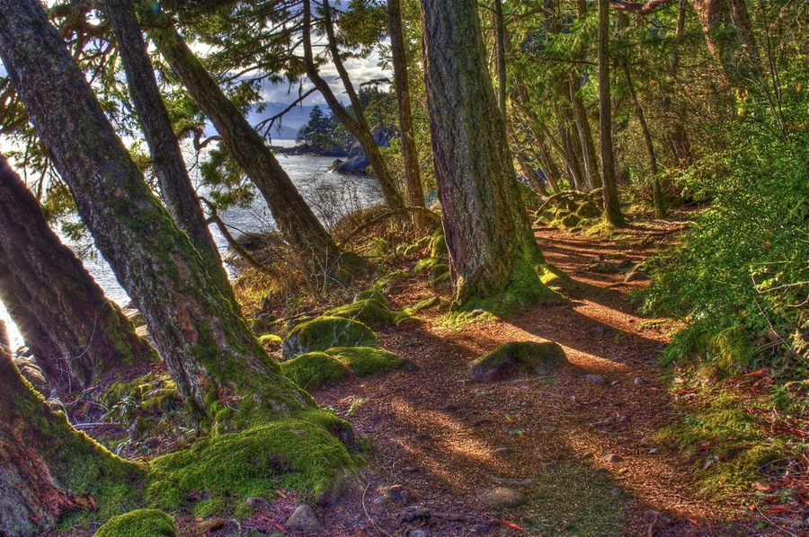 East sooke trails coast 2