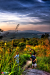 Broga-hill-skyline