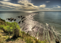 Cape_kidnappers_005