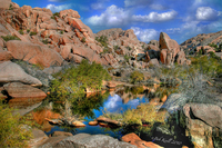 Jtnp-barker_s-dam-wide-view
