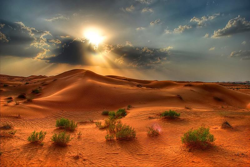 Desert Sunset | HDR creme