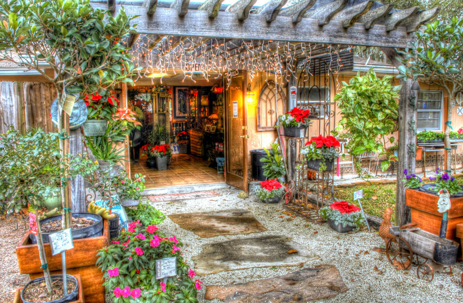 hollie 39 s farm and garden store hdr photo hdr creme