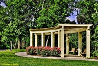 Pergola-with-flowers