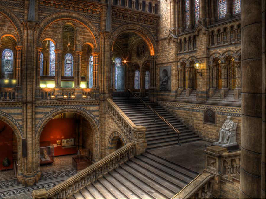 Hogwarts Moving Staircase Hdr Creme