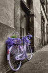 Bicycle-color-and-b-w-
