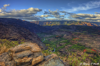 Waimea-canyon-road