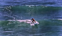 Paddle-surfer-