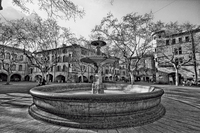 Fountain-b-w