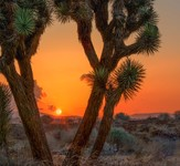 High-desert-sunset-ii