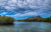 El-morro-a-view-from-the-mangroves-