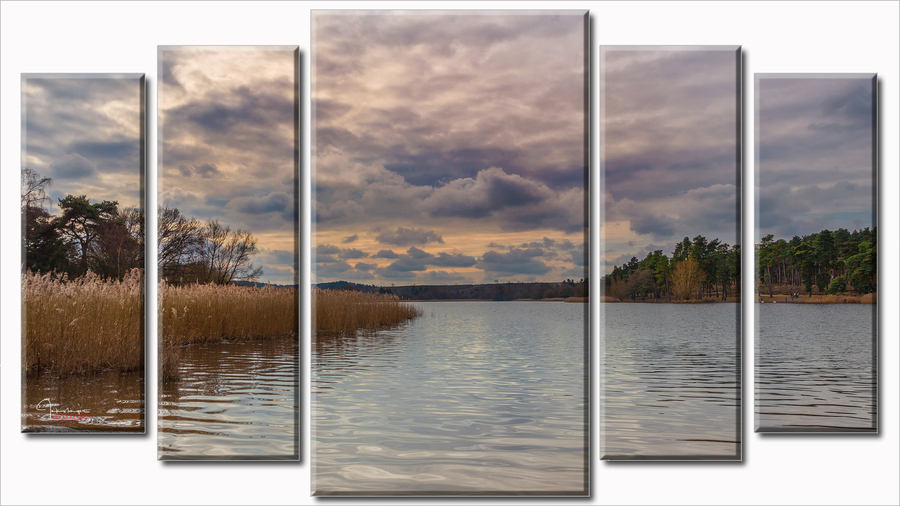 Frensham pond wall art