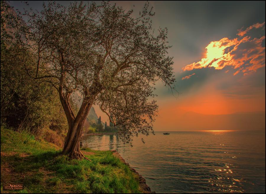 Lac de gard 2c