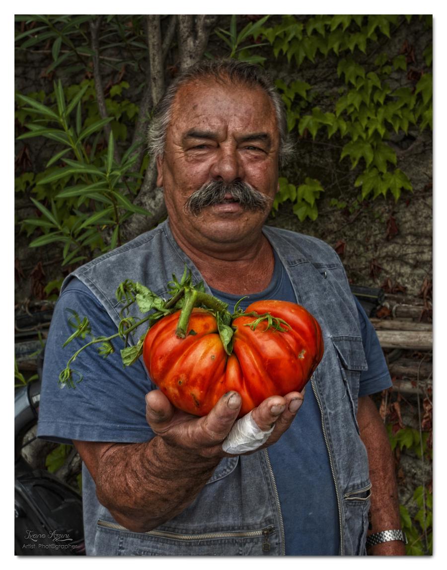 Pomodori giganti 1a