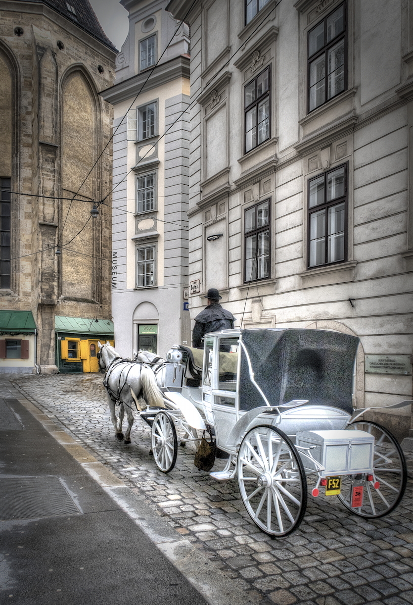 Vienna17.3