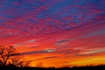 Sunrise_20jan11_44_1